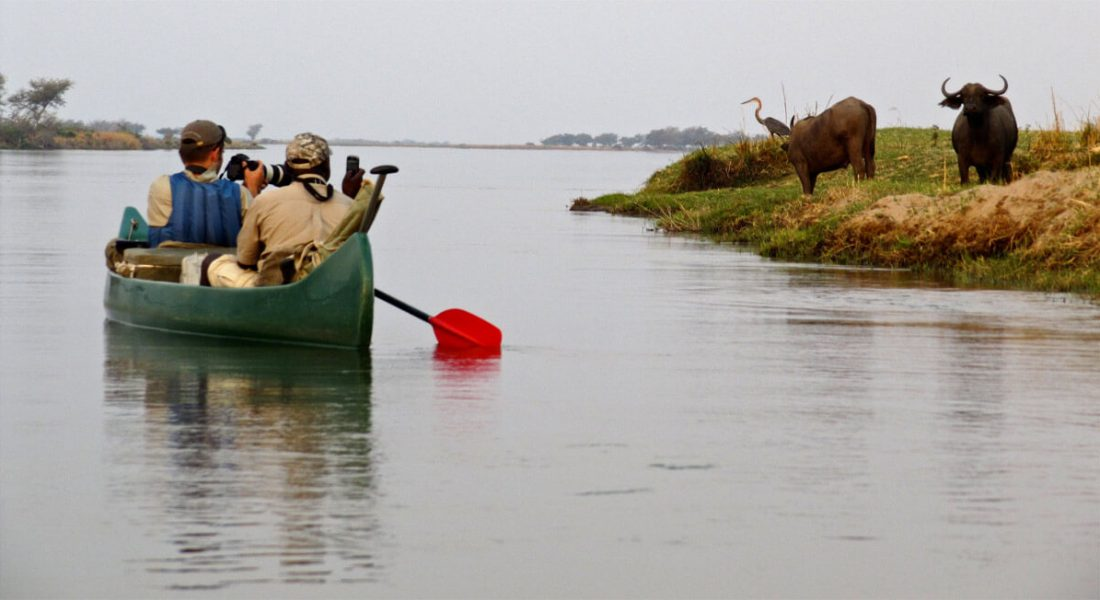 Canoeing Safaris