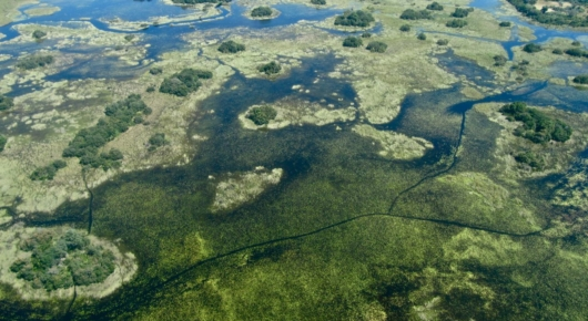 Flying over the Okavango Delta is thrilling