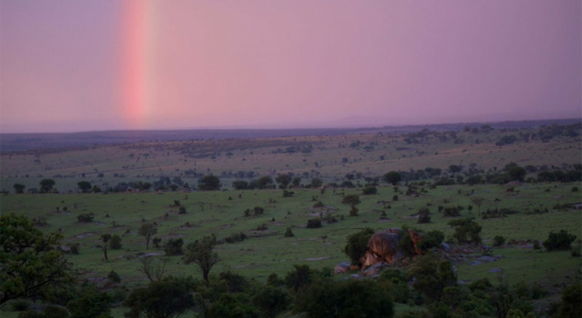 After the storm, a rainbow colours the sky over the Masai Mara
