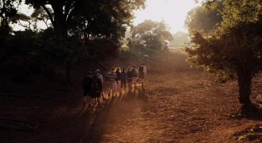 The Pafuri Walking Trail