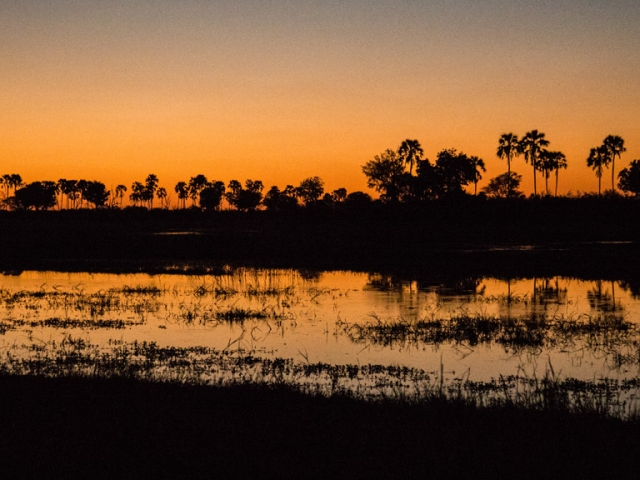 Delta sunset