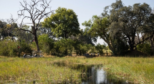 Returning to camp – set in the shade of these island trees