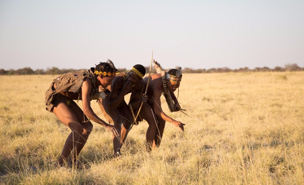 Walking with the bushmen