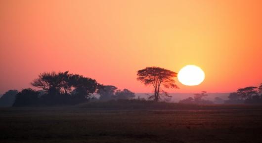 Zambia Sunrise