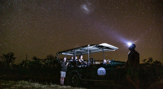 Glorious night skies - Pafuri