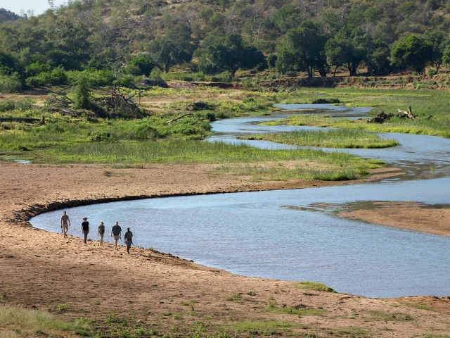 Untouched wilderness - Pafuri