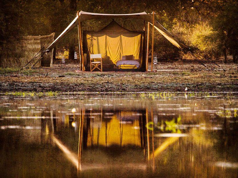 Tent on pan