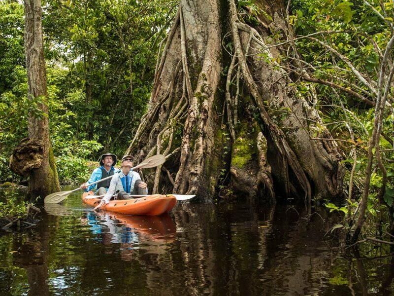 Odzala - River Experiences