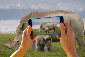 Rhino and camera